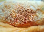 vwin线上娱乐馅饼vwin线上娱乐卷饼vwin线上娱乐早餐饼